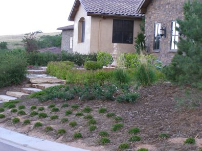 General Landscaping-Home modest front yard 1-2